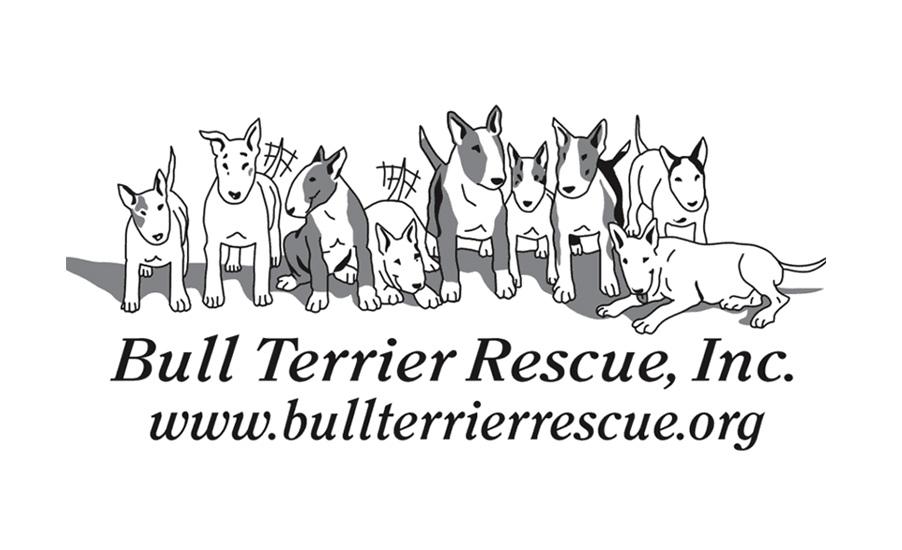 Bull Terrier Rescue