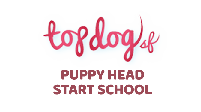Top Dog SF Puppy School