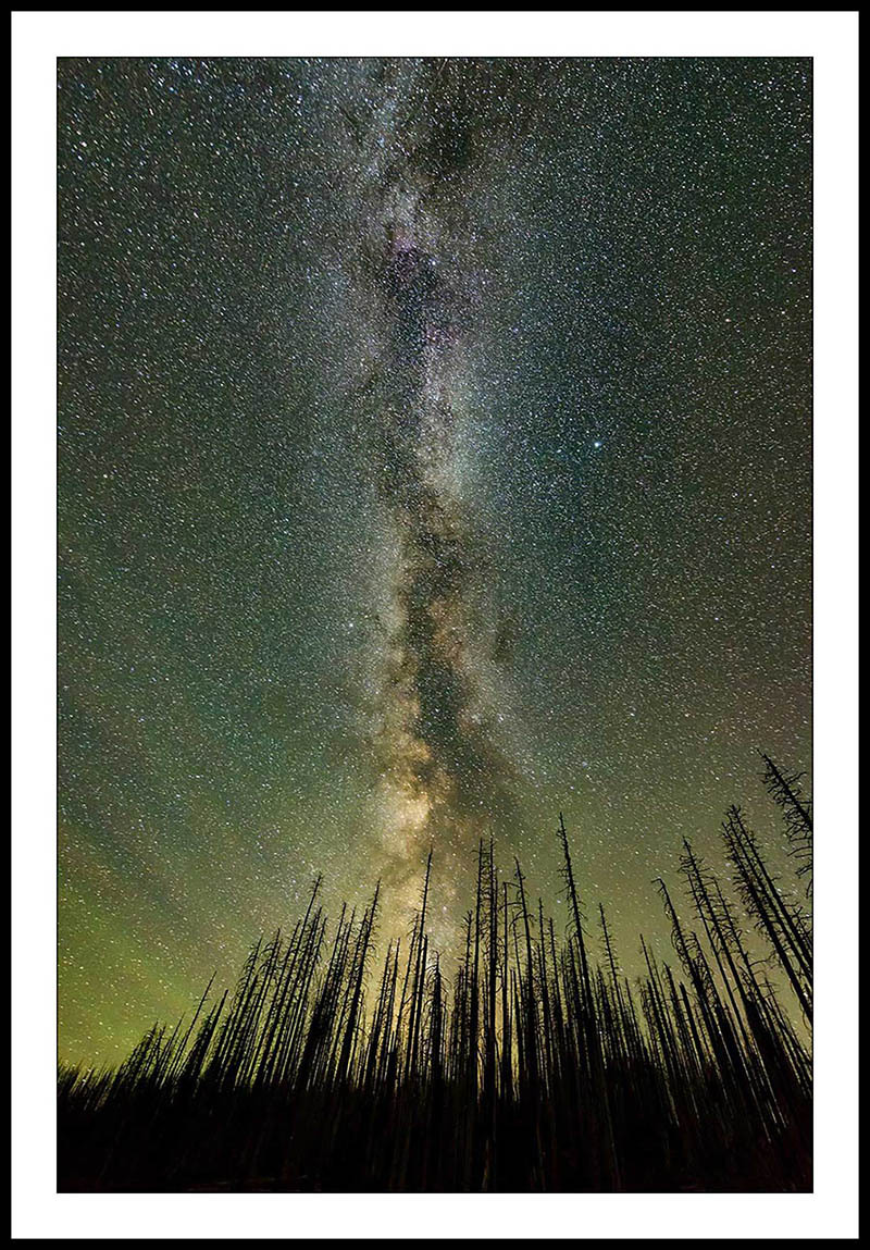 Milky Way and Burned Trees - Night Sky Photography, Oregon