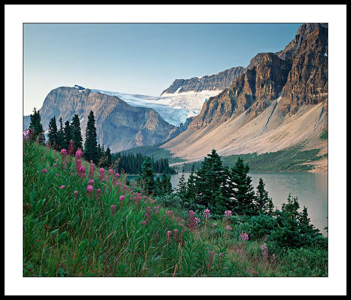 Glacier View from Banff Jasper Highway - British Columbia, Canada