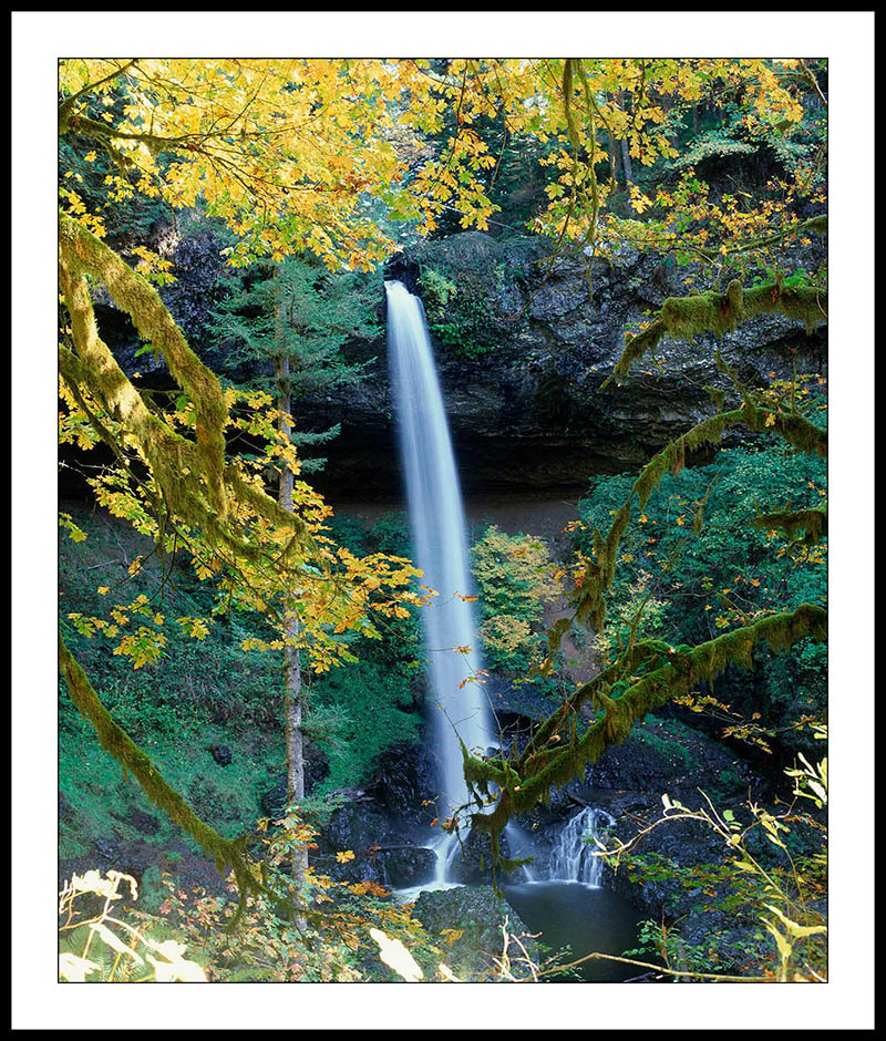 North Falls Through and Autumn Branch - Silver Falls State Park, Oregon