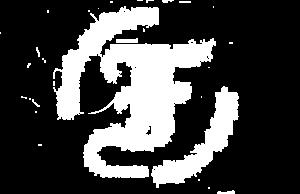 Furch20Logo
