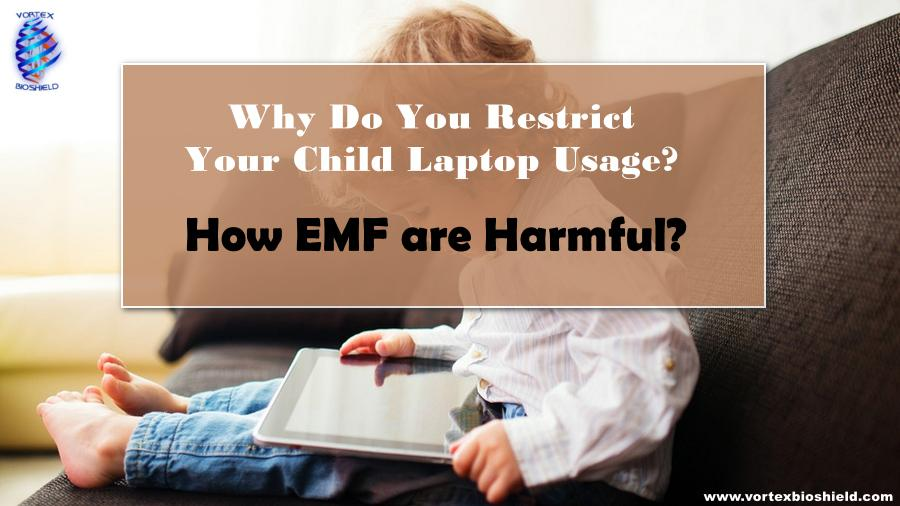 WHY DO YOU RESTRICT YOUR CHILD LAPTOP USAGE?