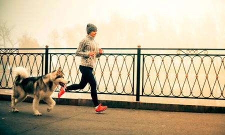 Correr con su mascota