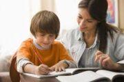 Home-school your intelligent child
