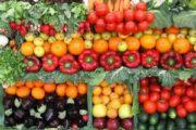 Vegetarian diet awakens your inner potential energy