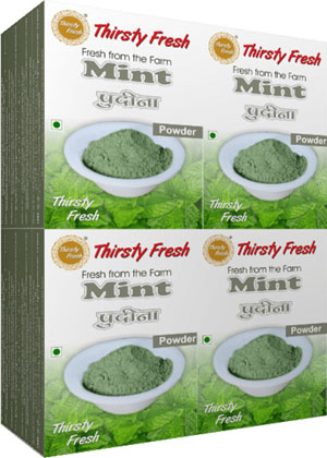 Thirsty Fresh Dehydrated Mint Powder Wholesale Box Pack Front View