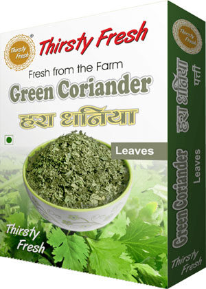 Thirsty Fresh Dehydrated Green Coriander Leaves Box Front View