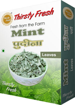 Thirsty Fresh Dehydrated Mint Leaves Box Front View