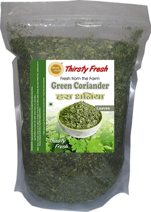 Thirsty Fresh Dehydrated Green Coriander Leaves Zipper Front View