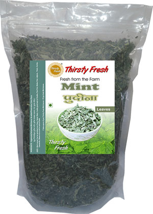 Thirsty Fresh Dehydrated Mint Leaves Zipper Front View