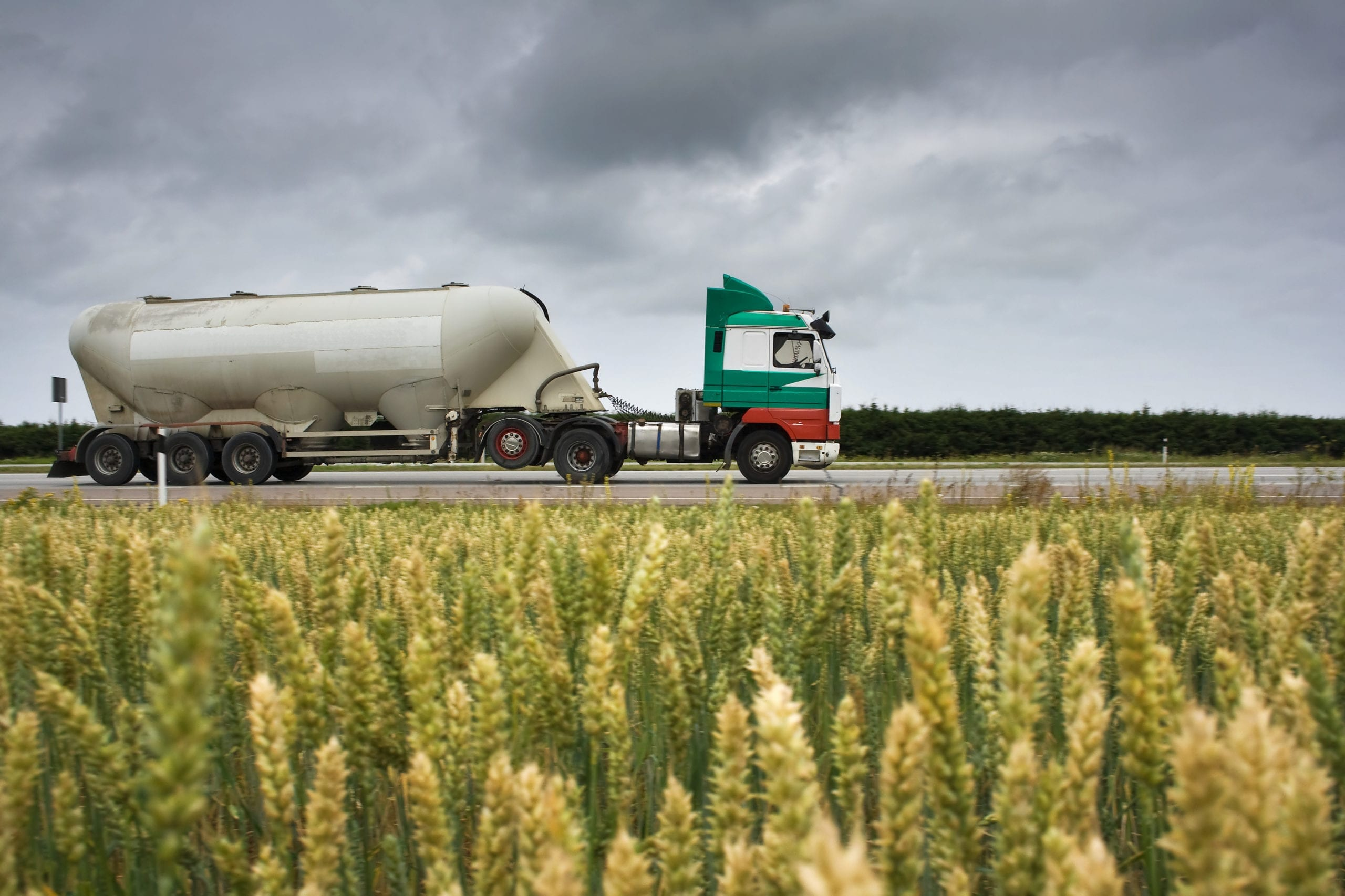 Food-Grade Specialty Freight Disinfection for Wet and Dry Containers