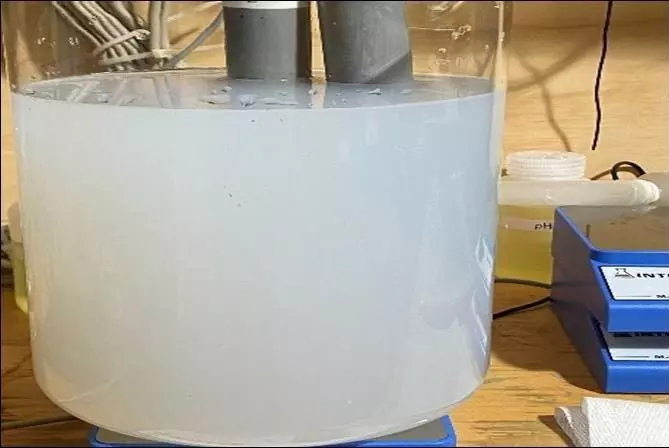 Comparing Peracetic Acid to Chlorine Dioxide