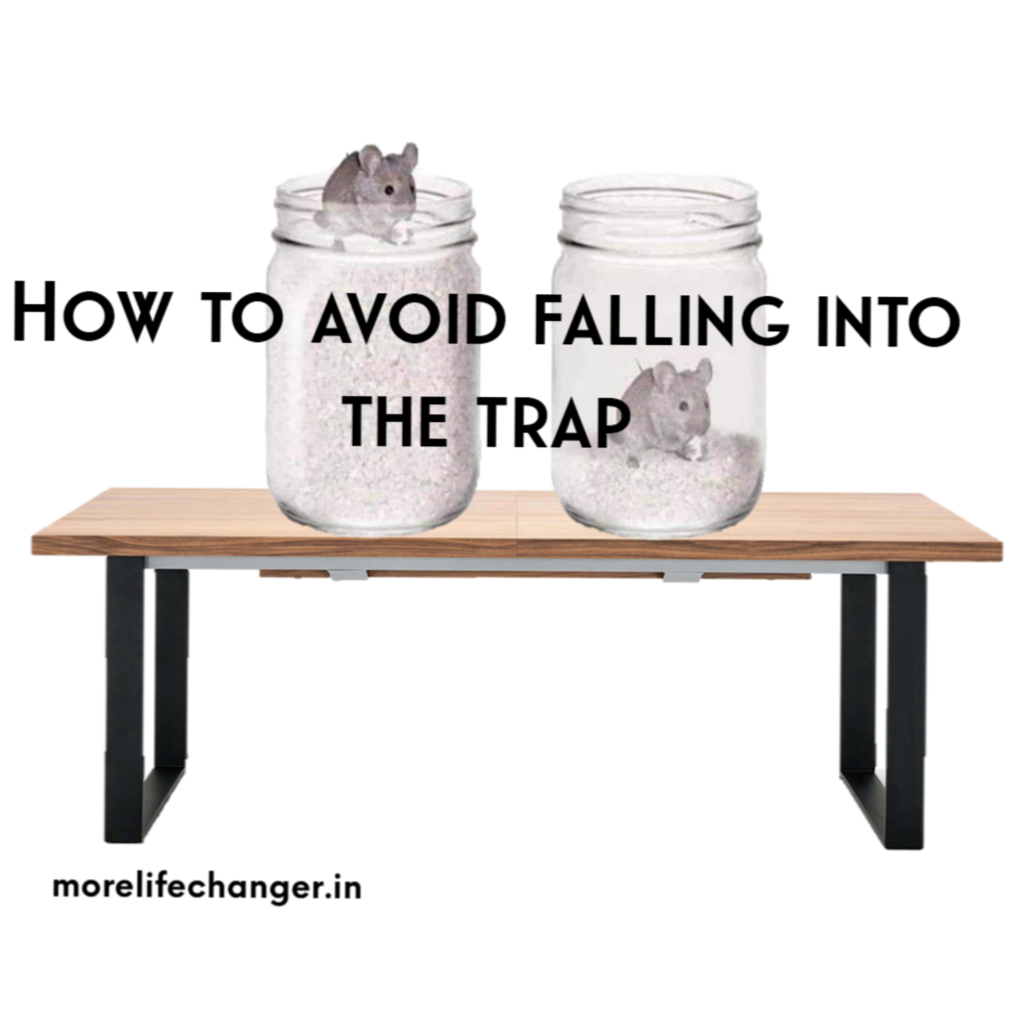 Story of mouse -How to avoid falling in trap