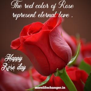 Happy rose day , Valentine week