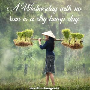 Wednesday wisdom 1