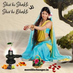 Shiv hi Shakti , Shiv hi bhakti