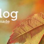 autumn-blog_01