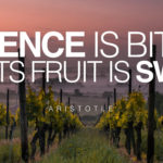 words-of-wisdom-bitter-patience