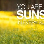 words-of-wisdom-sunshine-in-every-inch