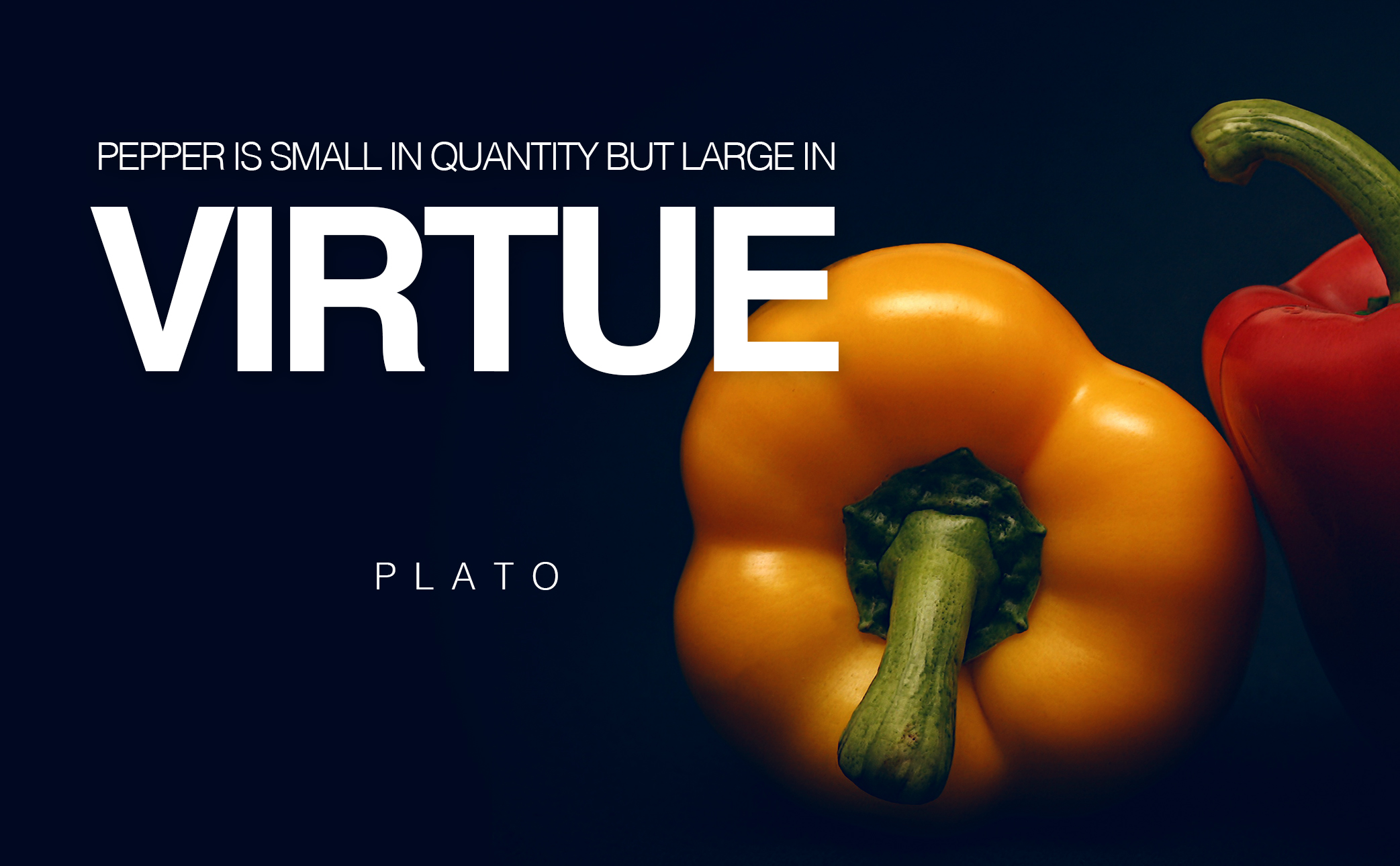 featured-image-large-in-virtue