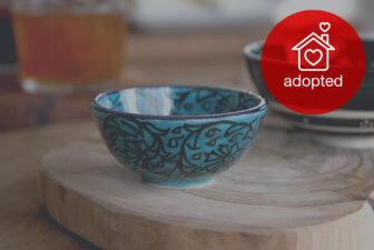0510-hand-painted-iznik-bowl-adopted