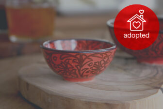 0514-hand-painted-iznik-bowl-adopted