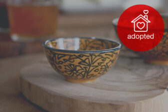 0519-hand-painted-iznik-bowl-adopted