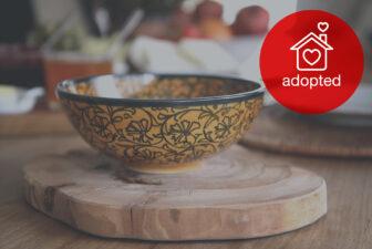 1524-hand-painted-iznik-bowl-adopted