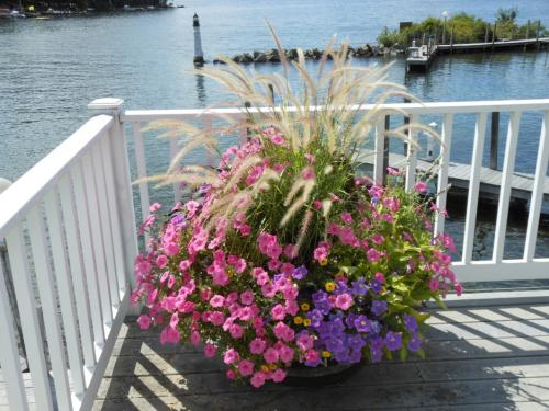 Flowers and view from WHYC deck.