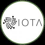Logo Fundação iota.