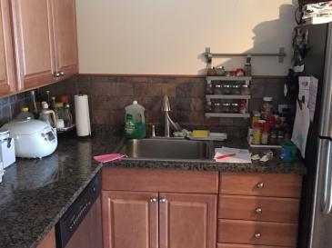 dark kitchen 1 (IMG_7165)