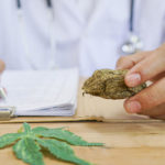 Medical Cannabis and CBD: An Old Medicinal Option is New Again