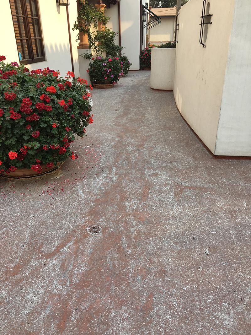 Walkway through ashes
