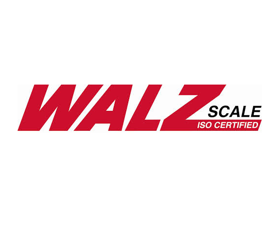 seo examples content strategy case study with Walz Scale
