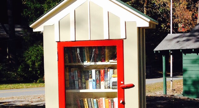 Lake Lure Little Free Library