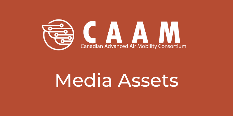 CAAM Resource Library Template (4)