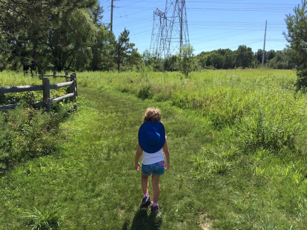 Kids Hiking Guide: How to Start Hiking Now