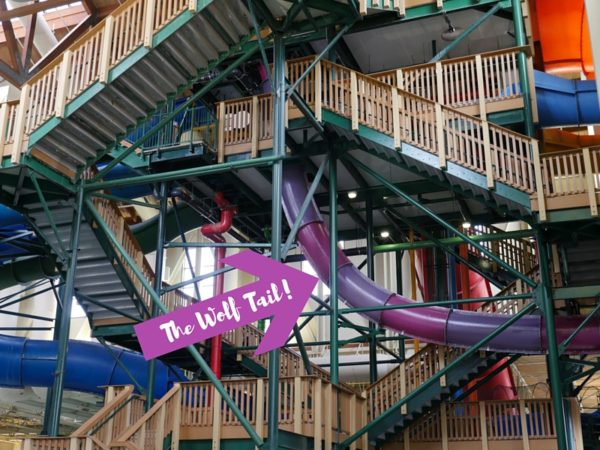 All you Need to Know To Get a Great Great Wolf Lodge Deal in Niagara Falls.