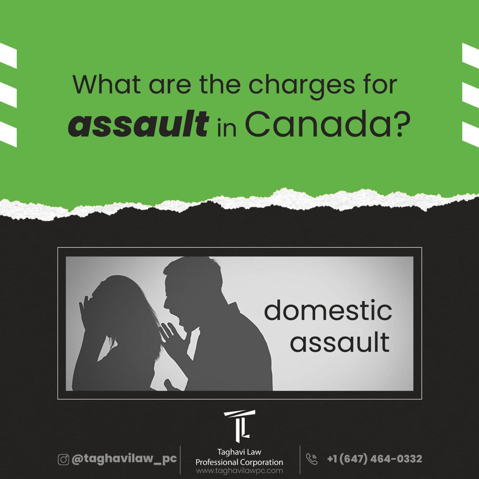 Domestic Assault
