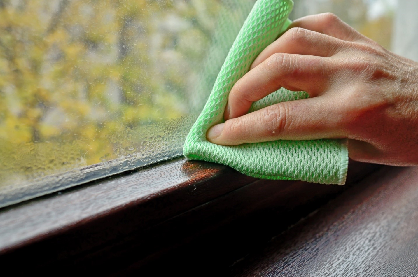hand with green cloth wiping bottom of window