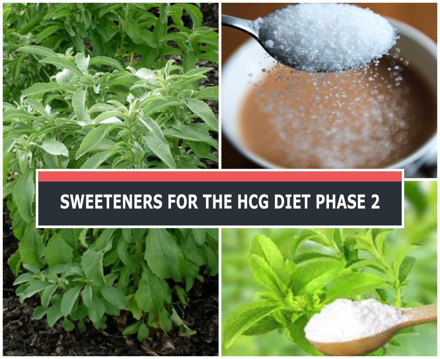 SWEETENERS FOR THE HCG DIET PHASE 2