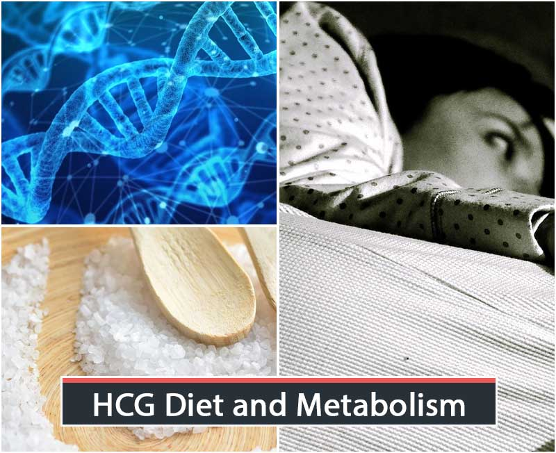 HCG Diet and Metabolism