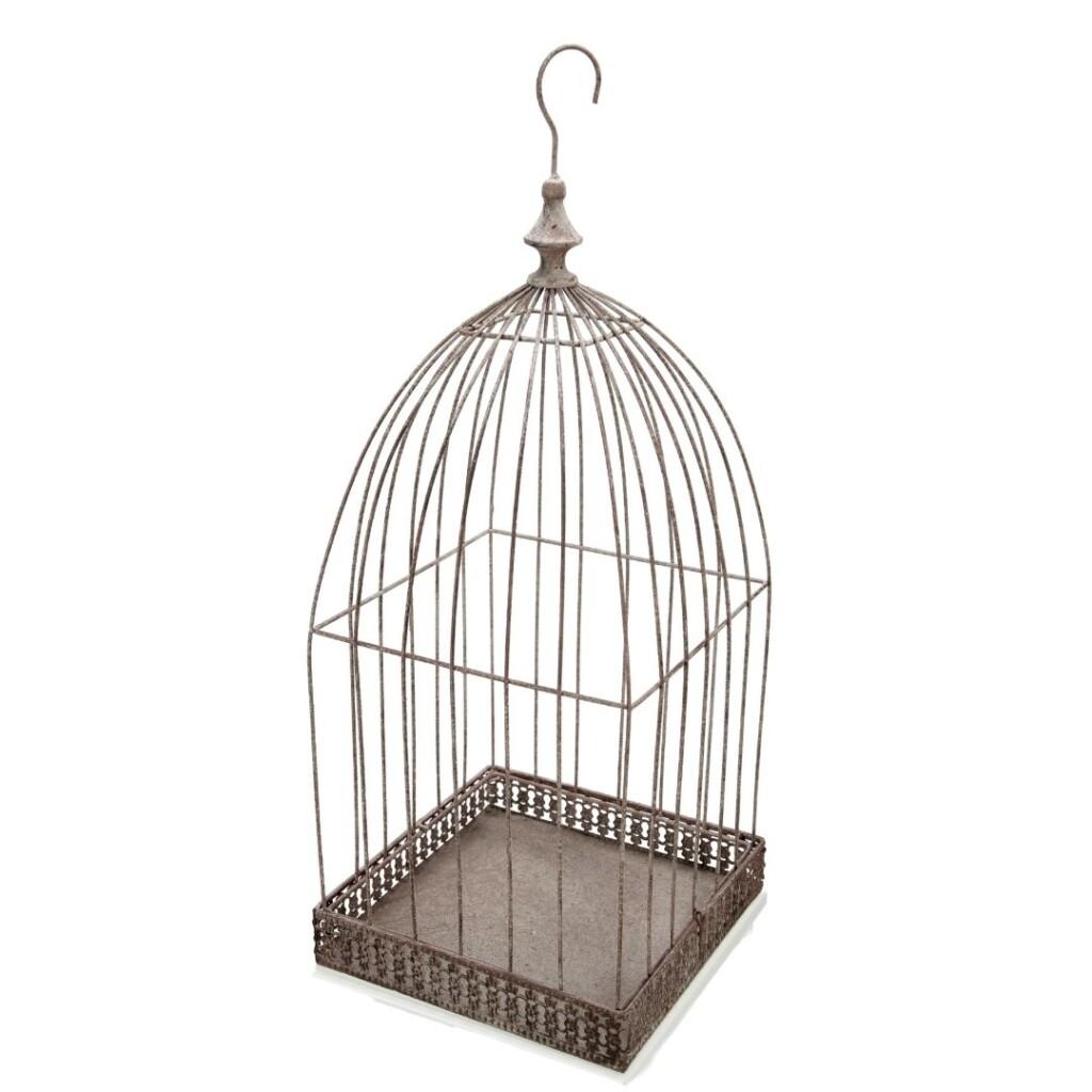 Birdy Gray Image