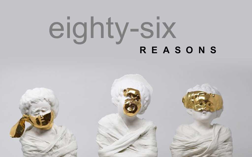 86 REASONS (for asylum admission