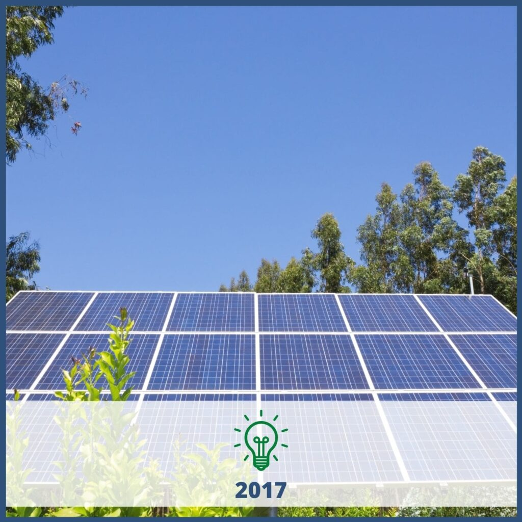 Solar panels with trees and blue sky