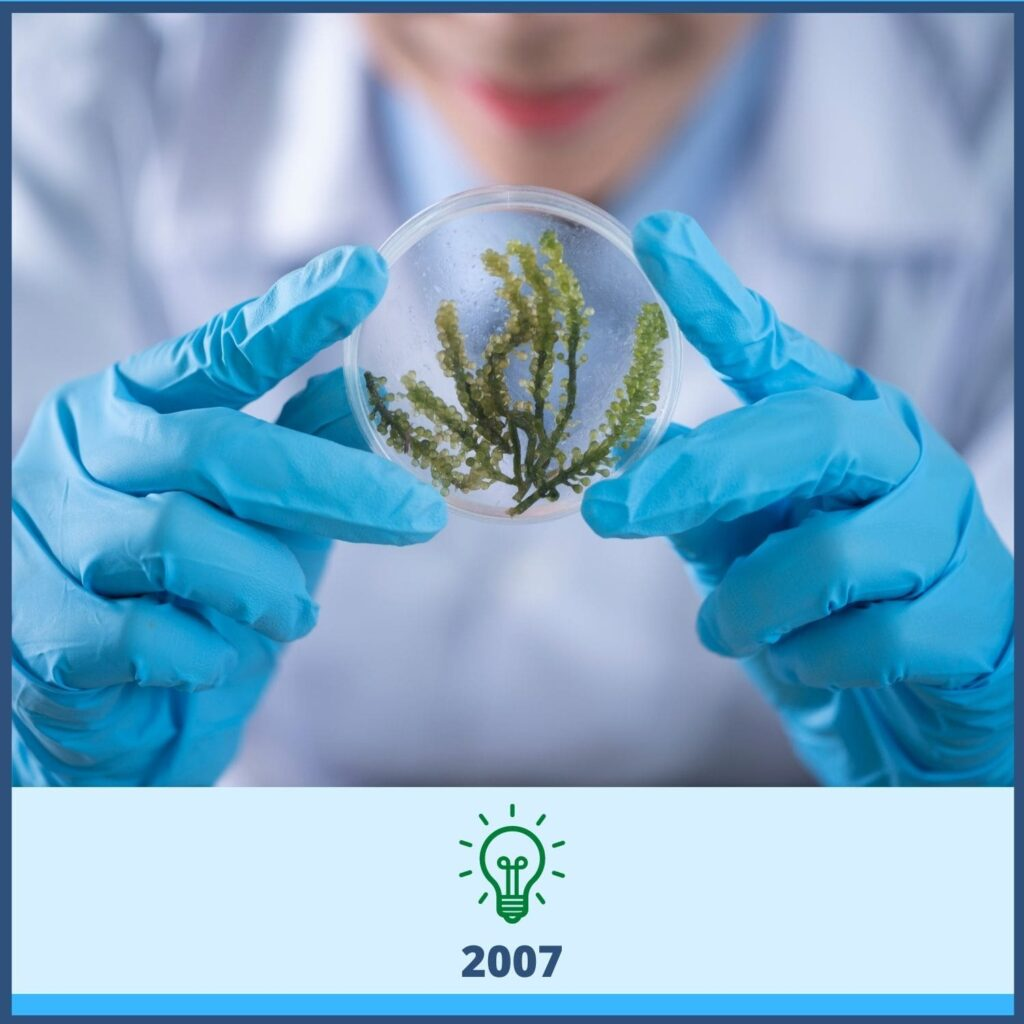 Scientist with blue gloves holding glass circle with plant inside