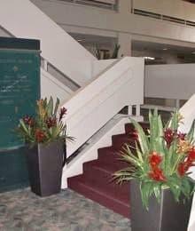 Tropical arrangements in convention center