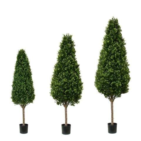 Boxwood Tower topiary