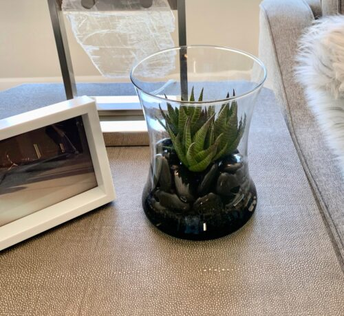 Faux Succulent in designer glass with black rocks